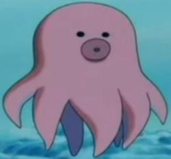 Octacon innocuo