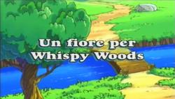 Un fiore per Whispy Woods