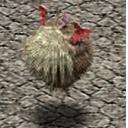 Ballbat CA12260 (Sora SC Monster)