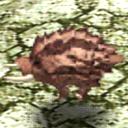 Gourd Boar CA10340 (Sora SC Monster)