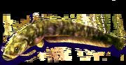 Snakehead (Sen III)