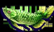 Green Arowana (Sen III)