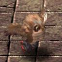 Elder Owl CA10380 (Sora FC Monster)