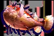 Spiky Puffer (Sen III)