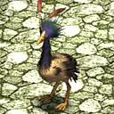 Roadrunner CA11080 (Sora SC Monster)