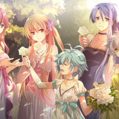 The women of Class VII at the Imperial Wedding