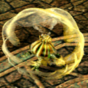 Amber Turtle CA10410 (Sora FC Monster)