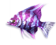 Queen Azelfish (Sen III)