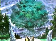 Tree Karuma introduction anime