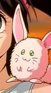 Lulupapa anime