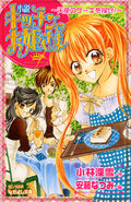 Novel (japanese)
