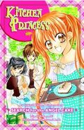 Novel (english)