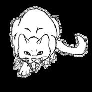 Katzenrasse hbl.