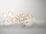 Ocicat - Lavender (fur)