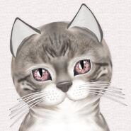 KittyCatS Bengal Snow - Fancie Pink Diamond