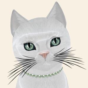 KittyCatS! - Amore