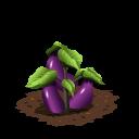 Eggplant last