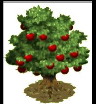 Apple Tree2