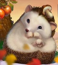 Hedgehog-mainpage