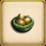 Peafowl egg framed