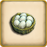 Chicken egg framed