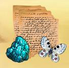 Chucks diary quest