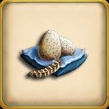 Turkey egg framed