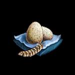 Turkey egg