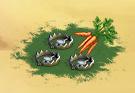 Trap quest