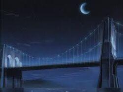 The Bridge-SoM