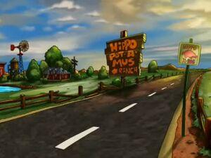 Hippo Pot-A-Mus Ranch