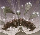 Battle of Void