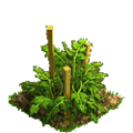 Tomatoes plant ph1.png
