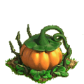 Pumpkin plant ph3.png