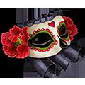 Coll masks dark