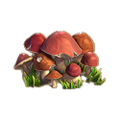 Mushrooms plant.png