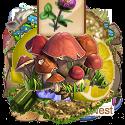 Mushrooms plant