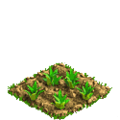 Pineapple plant ph1.png