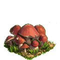 Mushrooms plant ph4.png