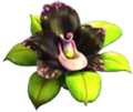 Black orchid item.png
