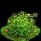 Flax plant ph1