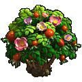 Briar-rose.png