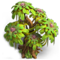 Res age-old tree 1.png
