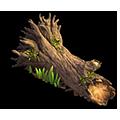 Res fallen oak 2.png