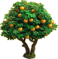 Orange tree ph4.png