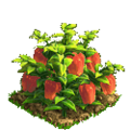 Pepper plant ph4.png
