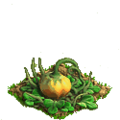 Pumpkin plant ph2.png