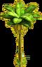Banana tree ph4