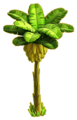 Banana tree ph4.png