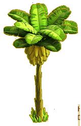Image Banana Tree Ph4 Png Knights And Brides Wiki Fandom